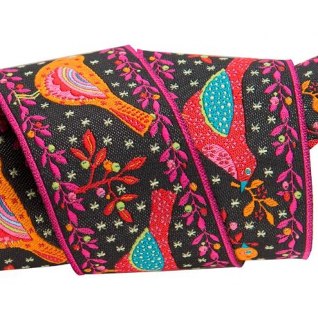 Black cats on Red